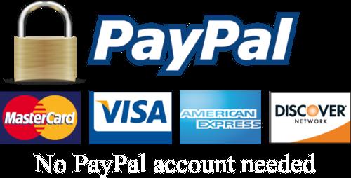 paypal logo w